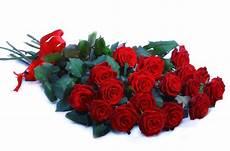 costo mazzo di fiori mazzo di rosse a gambo lungo consegna fiori lecce