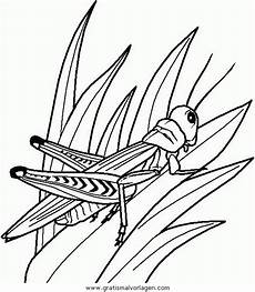Insekten Malvorlagen Tiere Insekten 65 Gratis Malvorlage In Insekten Tiere Ausmalen