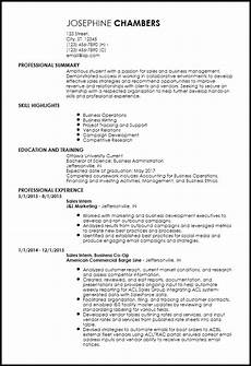 free entry level sales resume templates resume now