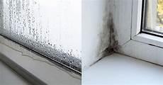 Feuchtigkeit Im Auto Katzenstreu - beschlagene autoscheiben katzenstreu paperbase site