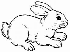realistic rabbit coloring pages printable bunny coloring