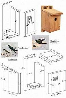 swallow bird house plans tree swallow plans are easy to follow and to build one