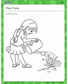 kinds of plants worksheets for kindergarten 13653 plant trees free plant worksheet for jumpstart