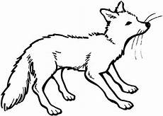 fox colouring pages for animal corner