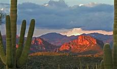 phoenix a voyage to phoenix arizona united states north america online travel news