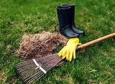 Rasen Vertikutieren Im Herbst So Machen Sie Es Richtig
