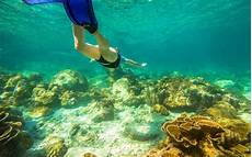 10 snorkeling spots you need to add to your bucket list travel leisure