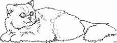 Malvorlage Katze Liegend Katze Auf Dem Boden Liegend Ausmalbild Malvorlage Tiere