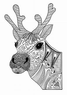 reindeer coloring page favecrafts