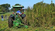 first hemp harvest in decades comes to oklahoma kokh