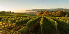 willamette valley heelers willamette valley number one in world wine regions