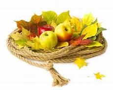 Malvorlagen Herbst Obst Herbst Ernte Obst Stock Bild Colourbox