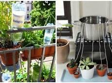 zimmerpflanzen im urlaub bewässern automatische bew 228 sserung zimmerpflanzen selber bauen hz68