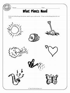 what plants need worksheets grade 13590 plants needs worksheet http www pic2fly plants needs free images frompo