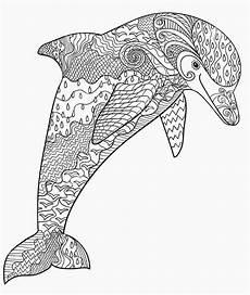 ausmalbilder f erwachsene delfin amorphi