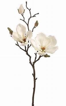 cream magnolia spray faux spring blooms afloral com