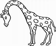 Giraffe Ausmalbilder Malvorlagen Giraffe Zum Ausdrucken 1046 Malvorlage Giraffe