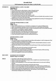 resume manager internal audit senior internal audit resume sles velvet