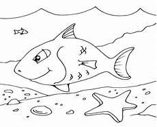 Unterwasser Tiere Malvorlagen Hochzeit Sch 246 Ne Unterwasserwelt Ausmalbilder Malvorlagen Tiere