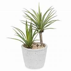 artificial potted yucca h 24 cm maisons du monde