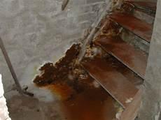 nasse wände ursachen feuchte w 228 nde nasse keller feuchtigkeit sch 228 digt ihr