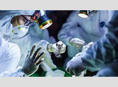 how long will corona virus outbreak last