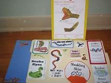 75 best homeschool share lapbooks images pinterest lap books teaching supplies and unit
