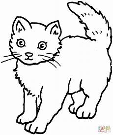Malvorlage Katze Liegend Malvorlage Katze Kostenlos