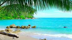 tropical island beach ambience sound thailand ocean
