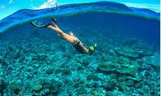 deepest free dive and other freediving trivia ideal dive
