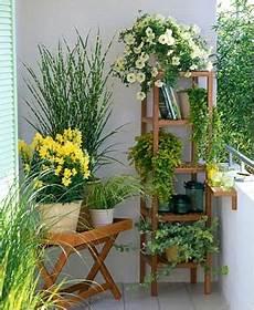 balkon ideen pflanzen use a sua varanda plantas de p 225 tio jardim de varanda