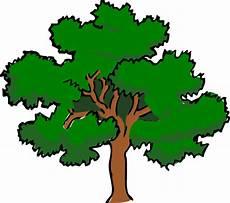 clipart alberi clipart vettoriali di oaktree con ia alberi immagini