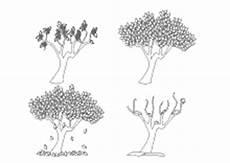 Malvorlage Apfelbaum Jahreszeiten Ausmalbilder Jahreszeiten Die Vier Jahreszeiten Fr 252 Hling