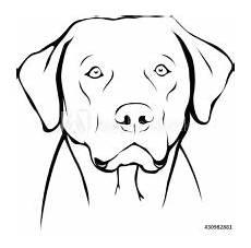 Ausmalbilder Hunde Labrador Malvorlagen Hunde Labrador Labrador