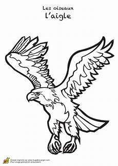 aigle dessin facile coloriage animaux oiseaux aigle 12 sur hugolescargot