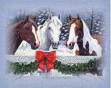 pferde unsere stolzen freunde frohe weihnachten