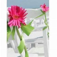 60 best gerber daisies wedding flower ideas images