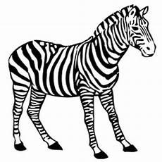 zebra malvorlage zum ausdrucken und ausmalen kostenlos
