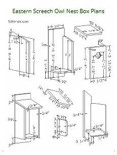 screech owl house plans birdhouse plans index attract bird families