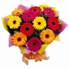 significato dei fiori gerbera bouquet gerbere regali net