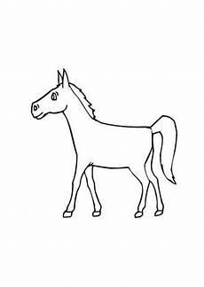 ausmalbilder junges fohlen pferde malvorlagen