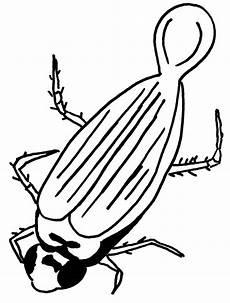 Malvorlagen Insekten Pdf Insekten Ausmalbilder Animaatjes De