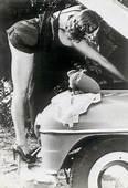 38 Best Car Boudoir Shoot Images  Girls Cars