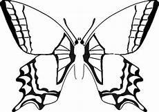 Malvorlage Schmetterling Drucken Ausmalbilder Schmetterling 20 Ausmalbilder Malvorlagen