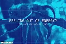 feeling out of energy let s get you back on track ganttic