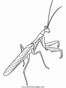 Bilder Zum Ausmalen Insekten Insekten 120 Gratis Malvorlage In Insekten Tiere Ausmalen