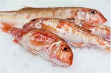 idée menu poisson marseillan le poisson au menu n 233 tait pas frais