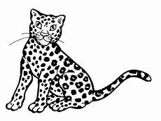 leopard pictures to print coloring home