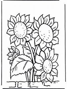 sonnenblumen malvorlagen blumen