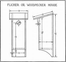 woodpecker bird house plans 17 best downy woodpecker images on pinterest bird houses